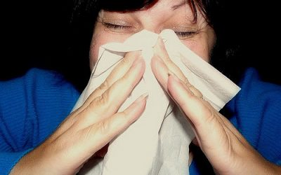 Treating Hayfever holistically